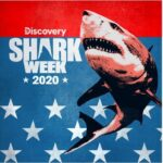 """DISCOVERY CHANNEL'S """"SHARK WEEK"""" DIVES INTO THE DEEP END WITH OVER 20 HOURS OF SHARK PROGRAMMING AIRING SUNDAY, AUGUST 9 TO SUNDAY, AUGUST 16"""