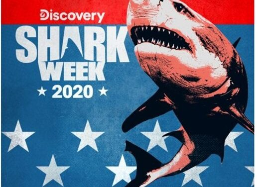 "DISCOVERY CHANNEL'S ""SHARK WEEK"" DIVES INTO THE DEEP END WITH OVER 20 HOURS OF SHARK PROGRAMMING AIRING SUNDAY, AUGUST 9 TO SUNDAY, AUGUST 16"